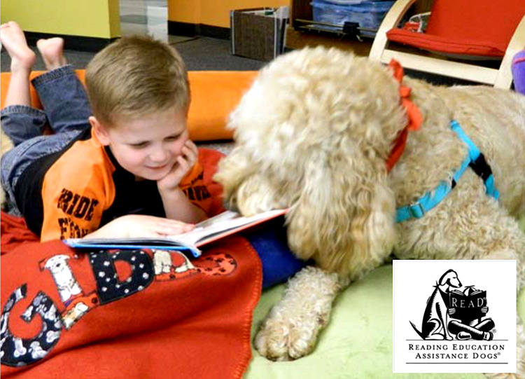 R.E.A.D. Therapy Dog Training